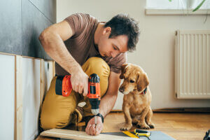 pet grooming business plan