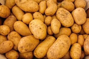 potato farming, and production