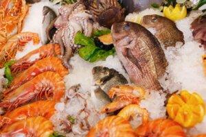 seafood restaurant business plan
