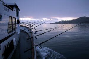 fishing charters business plan, charter fishing boats, charters, boat fishing, fishing  charter, fishing  charters