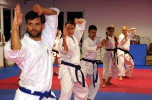 martial art school business plan, martial arts schools, martial arts training at home, new jersey martial arts, martial arts schools in new york city, martial art school,