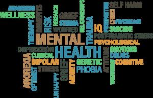 mental healthcare entrepreneurs