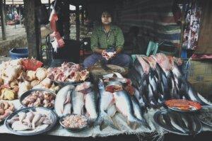 Aquaculture Business Plans