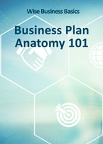 wise learning basic business plan anatomy 101