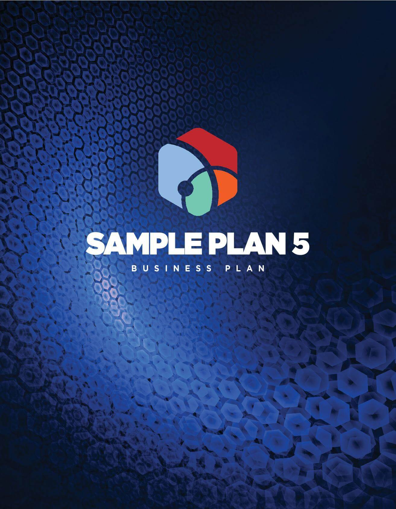 Business Plan Sample 1