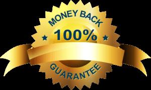 business plan template 100guarantee 300x179 2