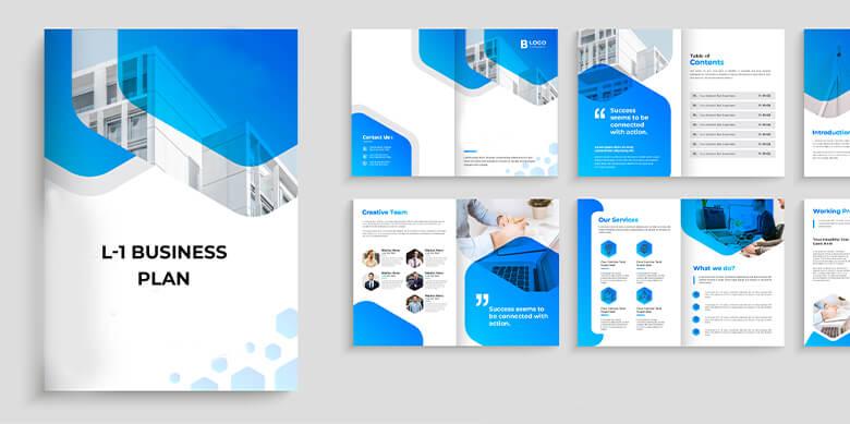 L 1 Visa Business Plan1