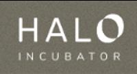 Startup Incubators and Accelerators